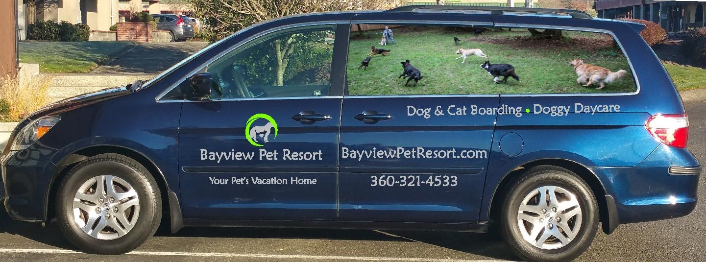 Bayview Pet Resort