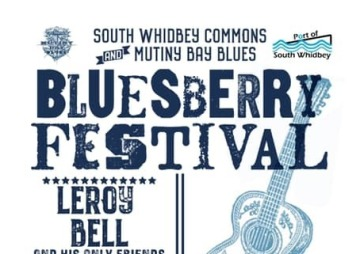 "The Second Annual ""BluesBerry Festival"", an outdoor fundraising blues concert"