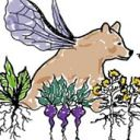 Flying Bear Florists