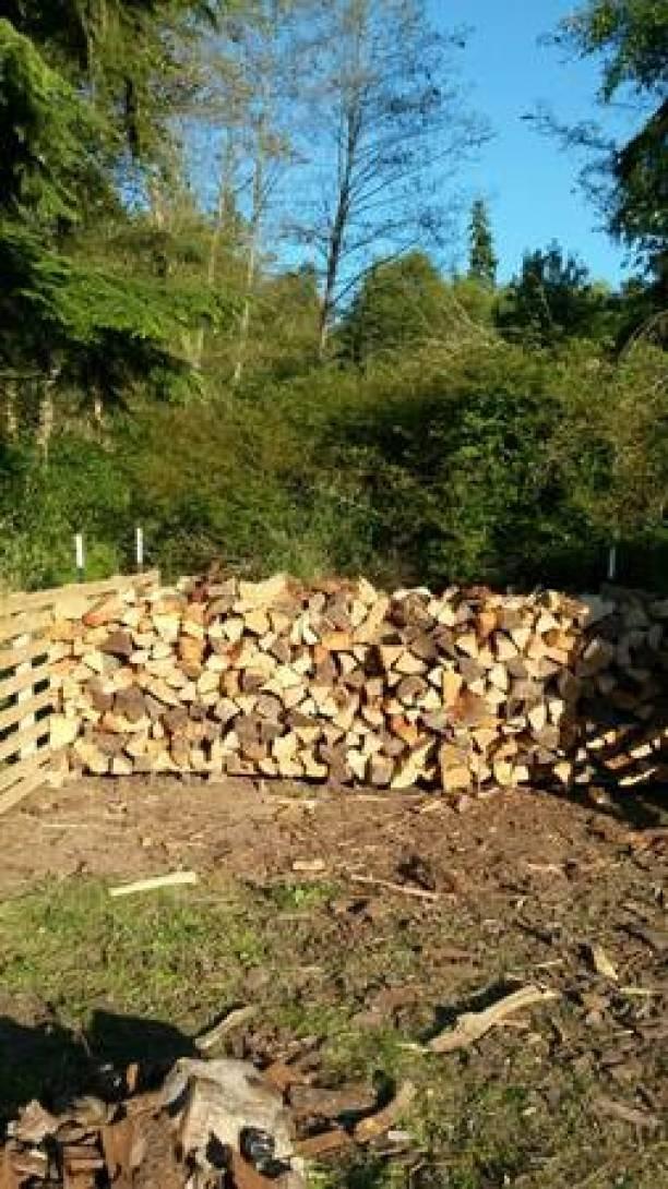 Fire wood per cord - $240 (Freeland )