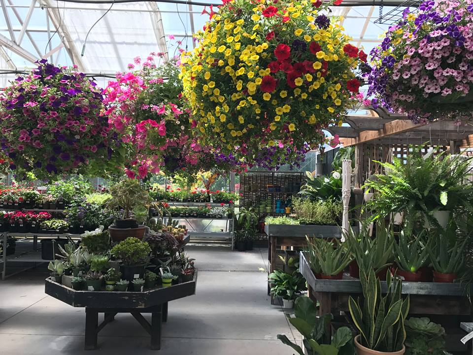 Bayview Farm And Garden On South Whidbey Offers Plants, Garden Supplies,  Gifts And A Comfortable Café
